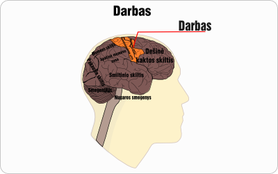 darbas wire