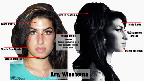 nortonas amy winehouse veido bruozai